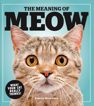 The Meaning of Meow PDF