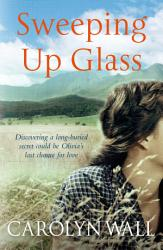 Sweeping Up Glass Book PDF