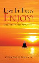 Live It Fully  Enjoy  PDF
