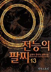 전능의 팔찌 13