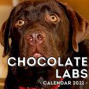 Chocolate Labs Calendar 2021