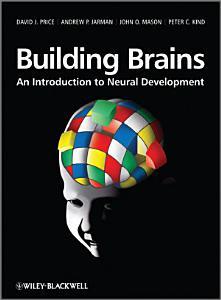 Building Brains Book