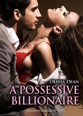 A Possessive Billionaire vol.7: His, Body and Soul