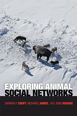 Exploring Animal Social Networks PDF