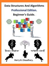Data Structures and Algorithms Professional Edition.: Beginner's Guide.