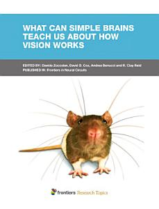 What can simple brains teach us about how vision works