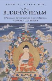 In The Buddha's Realm: A Physician's Experiences with Chogyam Trungpa, A Modern Day Buddha