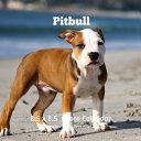 Pitbulls 8.5 X 8.5 Calendar September 2019 -December 2020