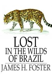 Lost in the Wilds of Brazil