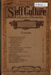 Modern Culture: Volume 3, Issue 2