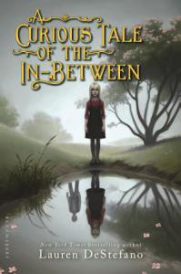 A Curious Tale of the In Between Book
