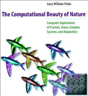The Computational Beauty of Nature
