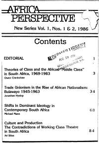 Africa Perspective PDF