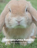 Adorable Little Rabbits Full-Color Picture Book
