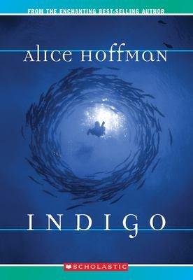 Download Indigo Book