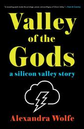 Valley of the Gods:A Silicon Valley Story