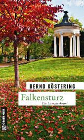 Falkensturz: Ein Offenbach-Krimi
