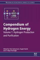 Compendium of Hydrogen Energy PDF
