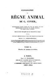 Planches des animaux invertébrés: Volume 2