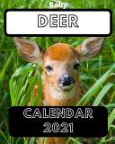 Baby Deer Calendar 2021 PDF