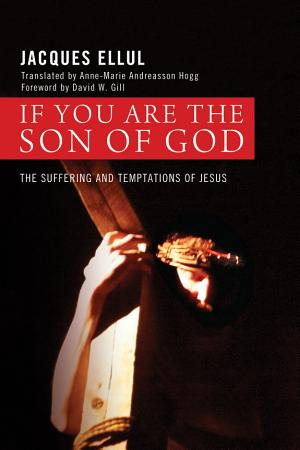 If You Are the Son of God PDF