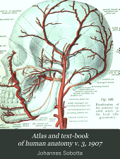 Atlas and text-book of human anatomy: Volume 3