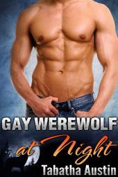 Gay Werewolf at Night: Short Gay Shifter Erotic Romance