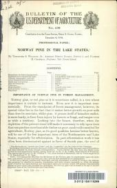 Norway Pine in the Lake States