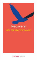 Download Recovery Book