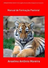 FormaÇÂo Pastoral Volume N° 2 Os Evangelhos Panorama Bíblico Teologia Do Novo Testamento