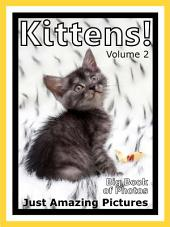 Just Kittens! vol. 2: Big Book of Kitten Cat Baby Cats Photographs & Pictures