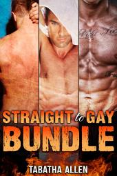Straight to Gay Bundle (First Gay Experience Fiction): Gay Quickies