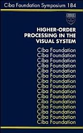 Higher-Order Processing in the Visual System