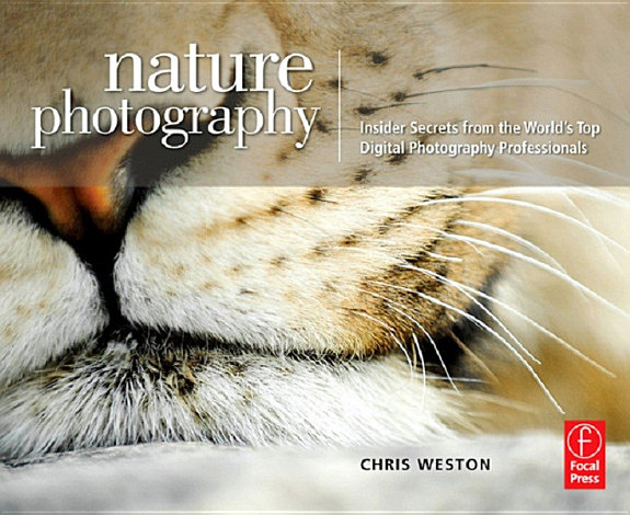 Nature Photography  Insider Secrets from the World   s Top Digital Photography Professionals