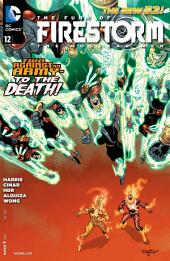 The Fury of Firestorm: The Nuclear Men (2011-) #12