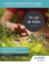 Modern Languages Study Guides: Un sac de billes: Literature Study Guide for AS/A-level French