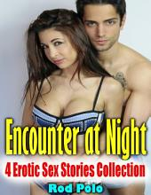 Encounter At Night: 4 Erotic Sex Stories Collection