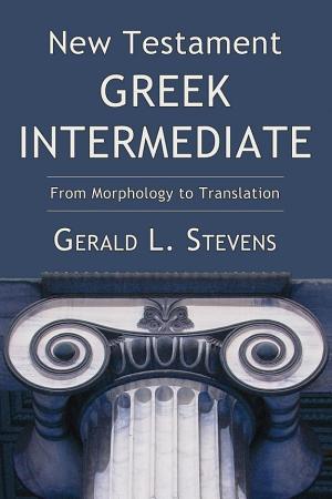 New Testament Greek Intermediate PDF