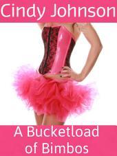 A Bucketload of Bimbos: A 5-Story Bimbo Bundle