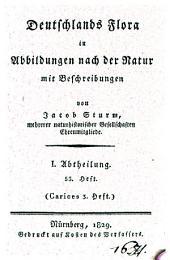 Deutschlands Flora: in Abbildungen nach der Natur mit Beschreibungen. ¬Abt. ¬I., Phanerogamen ; H. 53, Carices ; H. 3, Band 1,Ausgabe 53