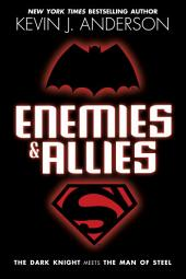Enemies & Allies: A Novel