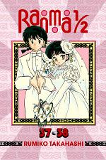 Ranma 1/2 (2-in-1 Edition), Vol. 19