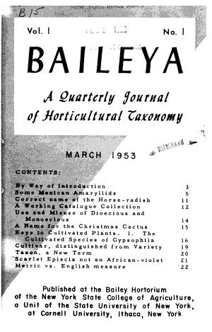 Baileya