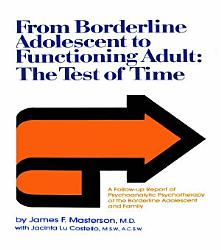 From Borderline Adolescent To Functioning Adult Book PDF