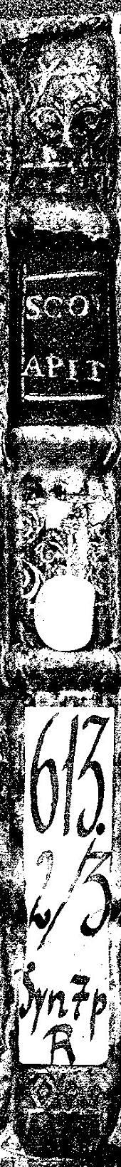 Schola Apitiana, ex optimis quibusdam authoribus diligenter ac nouiter constructa: Accessere Dialogi aliquot D. Erasmi Roterdami & alia qu[a]eda[m] lectu iucundissima