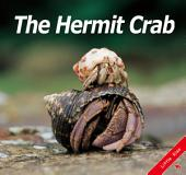 The Hermit Crab: Little Kiss43