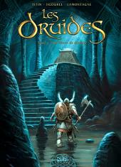 Les Druides T05: La pierre de destinée