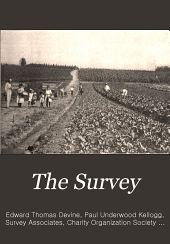 The Survey: Volume 13