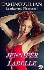 Taming Julian: Leather and Pleasure 6