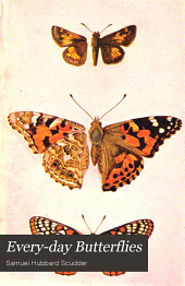 Every-day Butterflies: A Group of Biographies